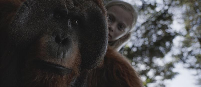 The War – Il Pianeta delle scimmie: il nuovo film di Matt Reeves, dal 13 luglio al cinema